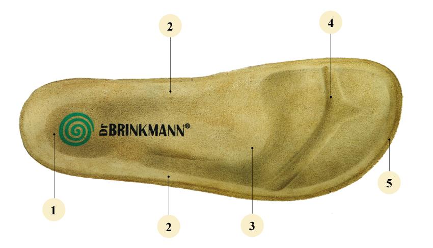 kobi, e-kobi, graficzne przedstawienie budowy wkładki fussbet firmy Dr Brinkmann