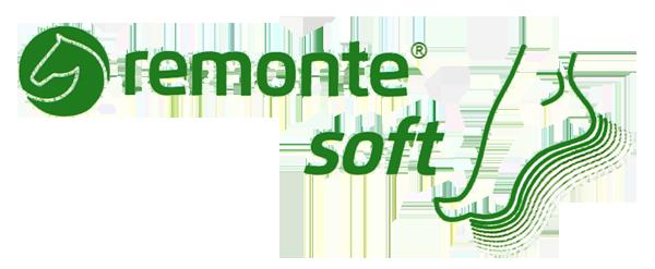 kobi, e-kobi, ikona linii REMONTE SOFT firmy RIEKER