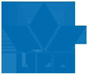 kobi, e-kobi, logo marki Lico