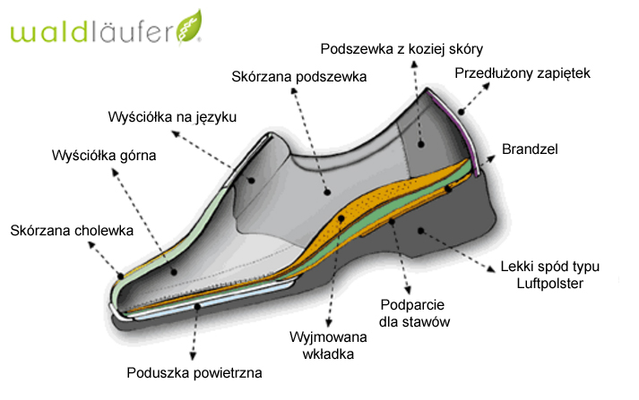 kobi, e-kobi, graficzne przedstawienie budowy obuwia firmy WALDLAUFER,