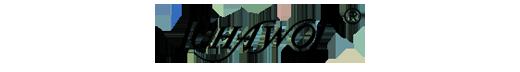 Schawos, logo marki, sklep internetowy e-kobi.pl